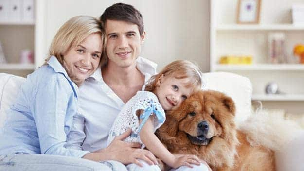 Wills & Trusts dog-young-family Direct Wills Norbiton